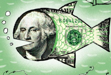 pieniądze z prowadzenia bloga